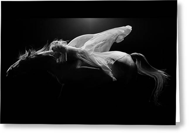 Greeting Card featuring the photograph Pegasus Full Bw by Dario Infini