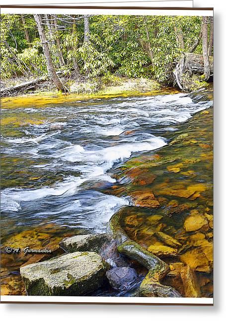 Pennsylvania Mountain Stream Greeting Card