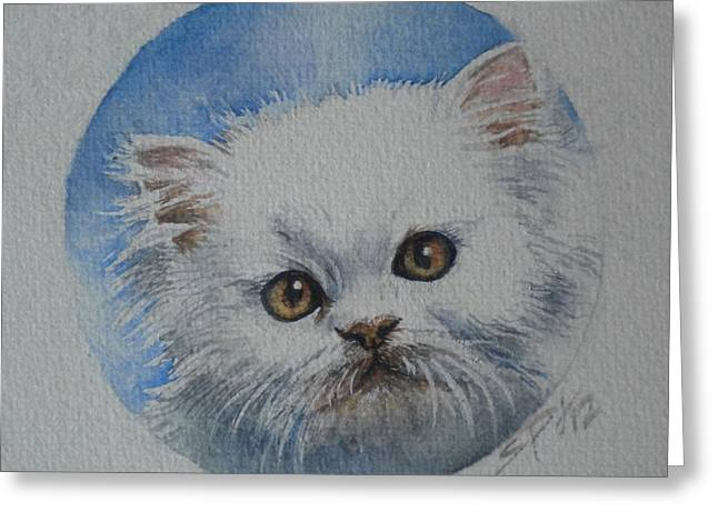 Persian Kitten Greeting Card by Sandra Phryce-Jones