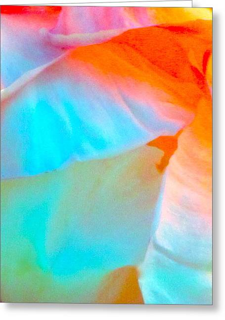 Petals Greeting Card by Gwyn Newcombe