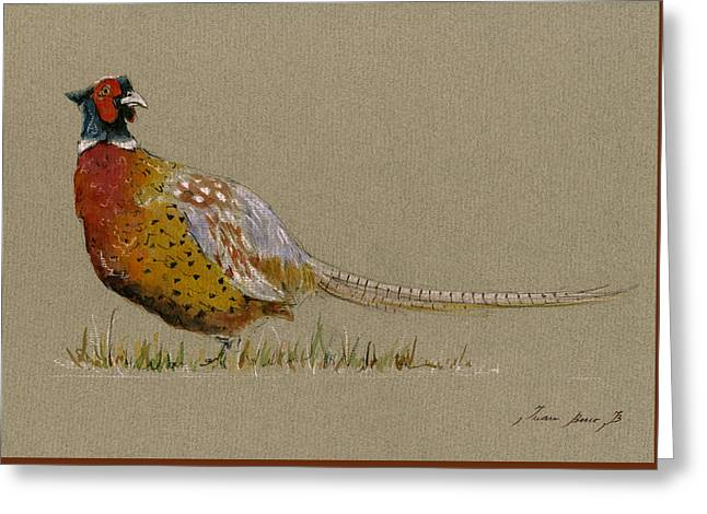 Pheasant Bird Art Greeting Card by Juan  Bosco