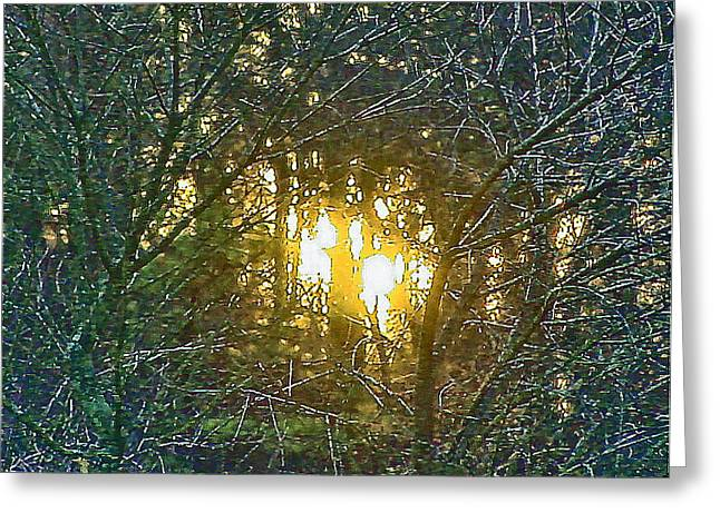 Photo Winter Solstice Dawn Greeting Card by Ray  Petersen