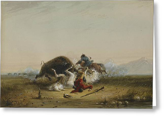 Pierre And The Buffalo Greeting Card by Alfred Jacob Miller