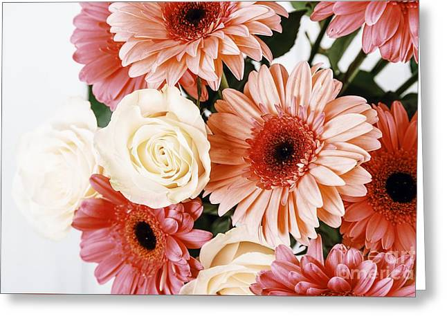 Pink Gerbera Daisy Flowers And White Roses Bouquet Greeting Card by Radu Bercan