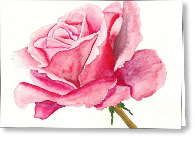 Pink Rose Greeting Card by Robert Thomaston