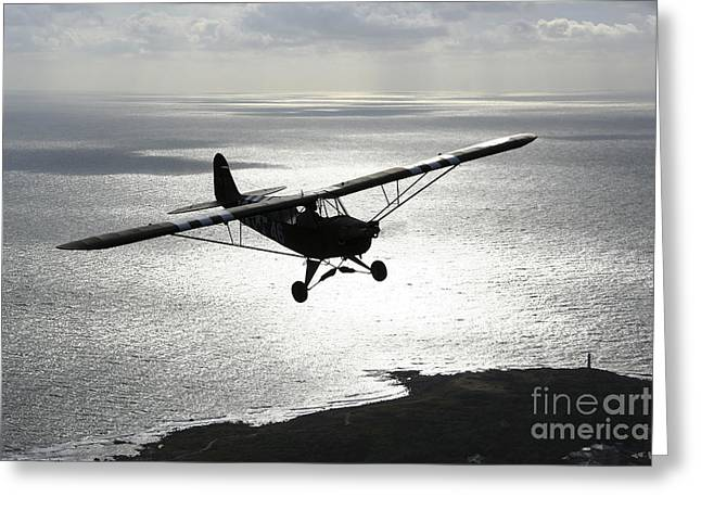 Landing Gear Greeting Cards - Piper L-4 Cub In Us Army D-day Colors Greeting Card by Daniel Karlsson