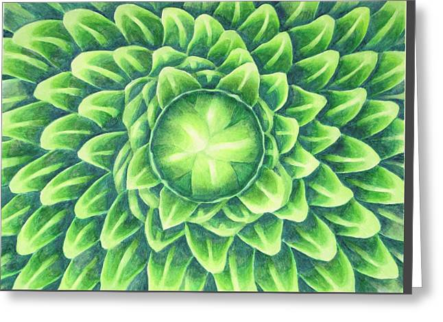 Plant Design Greeting Card by Thacia Langham