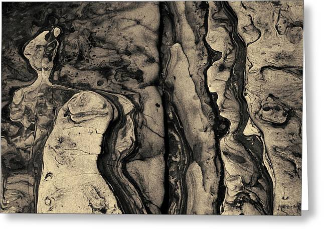 Point Lobos II Toned Greeting Card by David Gordon
