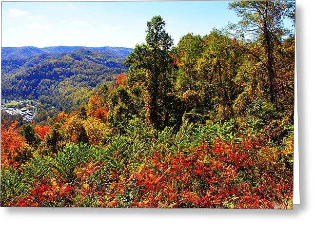 Allegheny Greeting Cards - Point Mountain Overlook Greeting Card by Thomas R Fletcher