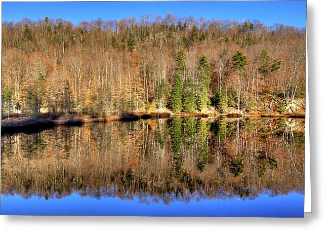 Greeting Card featuring the photograph Pond Reflections by David Patterson
