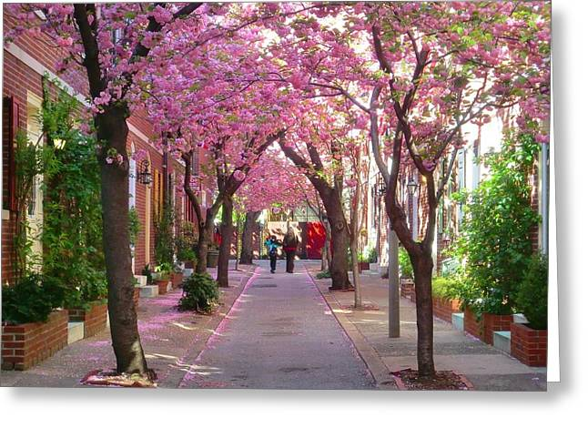 Prettiest Street In Philadelphia Greeting Card
