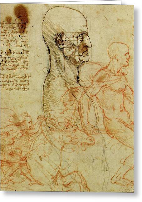 Profile Of A Man And Study Of Two Riders Greeting Card by Leonardo da Vinci