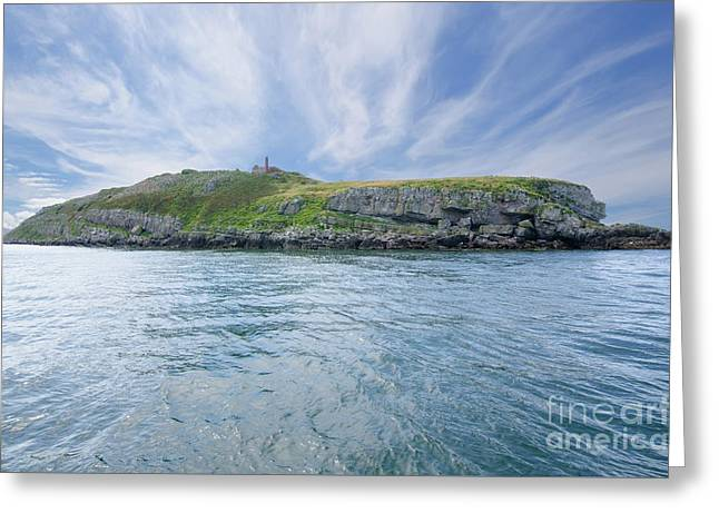 Puffin Island Greeting Card by Steev Stamford