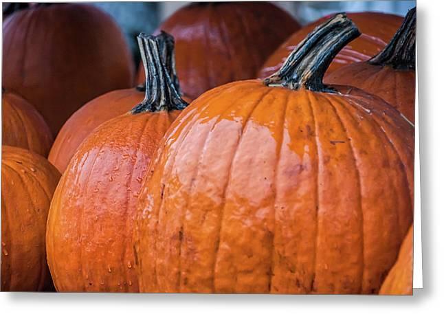 Pumpkins In Rain Greeting Card