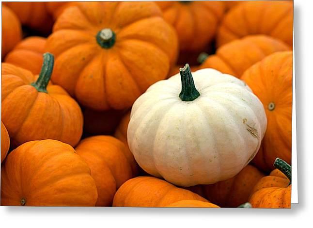 Pumpkins Greeting Card by Joseph Skompski