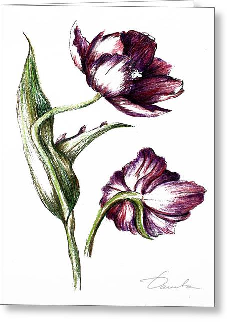 Fresh Green Drawings Greeting Cards - Purple flower Greeting Card by Danuta Bennett