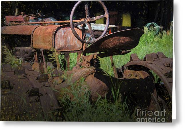 Put Out To Pasture Greeting Card by JRP Photography