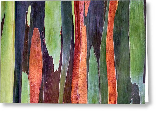 Greeting Card featuring the photograph Rainbow Eucalyptus by Susan Rissi Tregoning