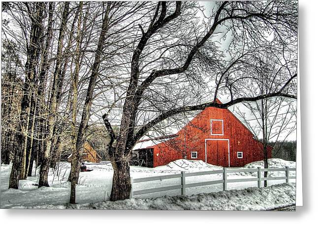 Red And White Greeting Card by Betsy Zimmerli