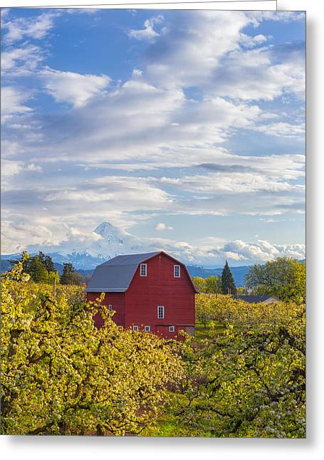 Greeting Card featuring the photograph Red Barn And Mt Hood by Patricia Davidson