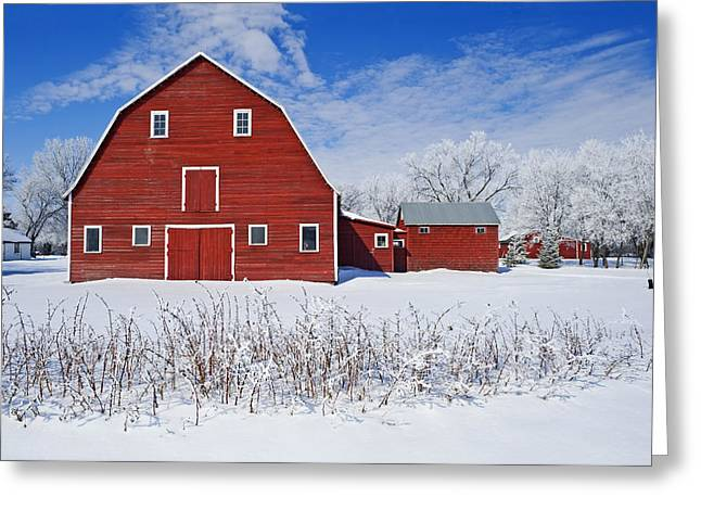 Hoar Frost Greeting Cards - Red Barn, Winter, Grande Pointe Greeting Card by Dave Reede