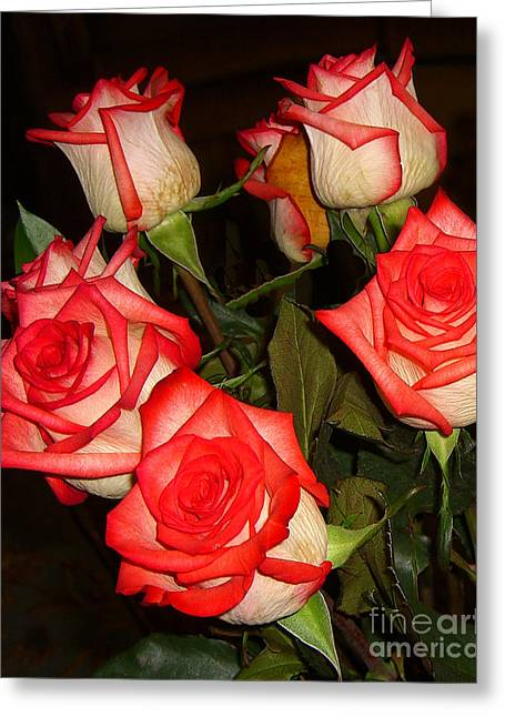 Greeting Card featuring the photograph Red Fringed Roses by Merton Allen