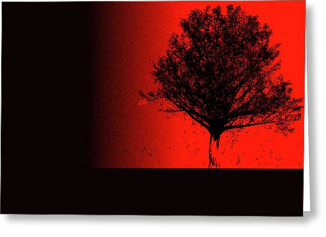Red Maple Greeting Card by Bob Orsillo