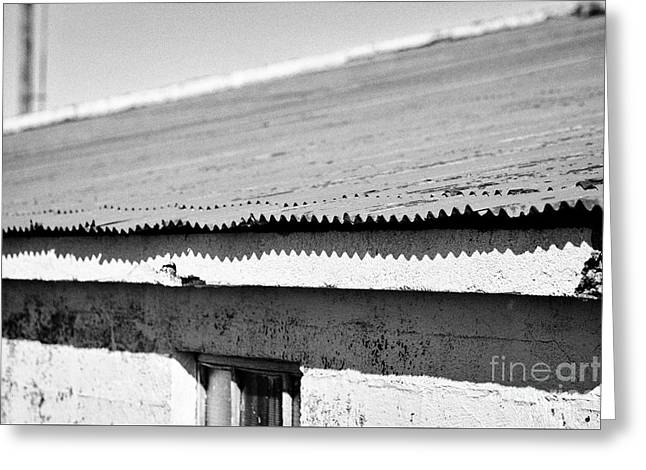 red painted corrugated metal roof on a farm outbuilding in Iceland Greeting Card by Joe Fox