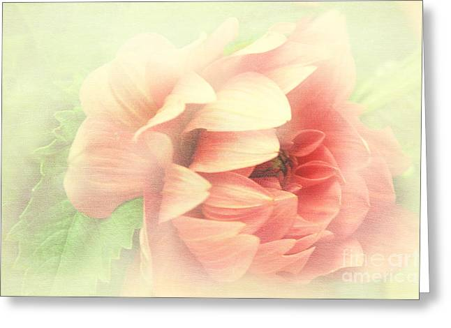 Red Peony Greeting Card