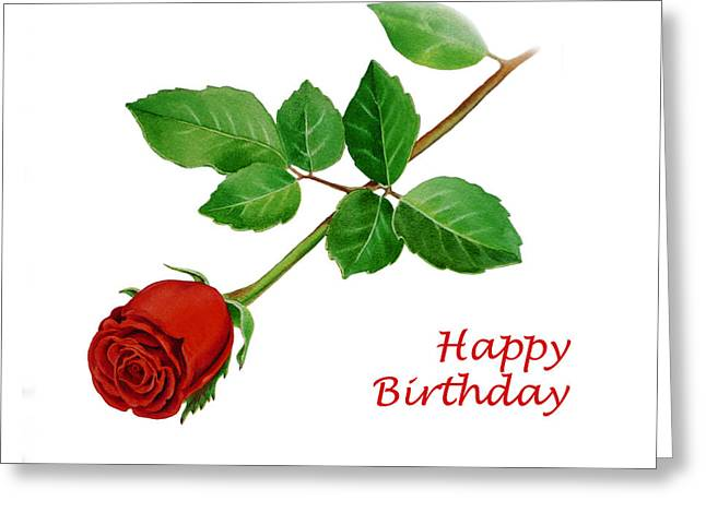 Red Rose Happy Birthday  Greeting Card