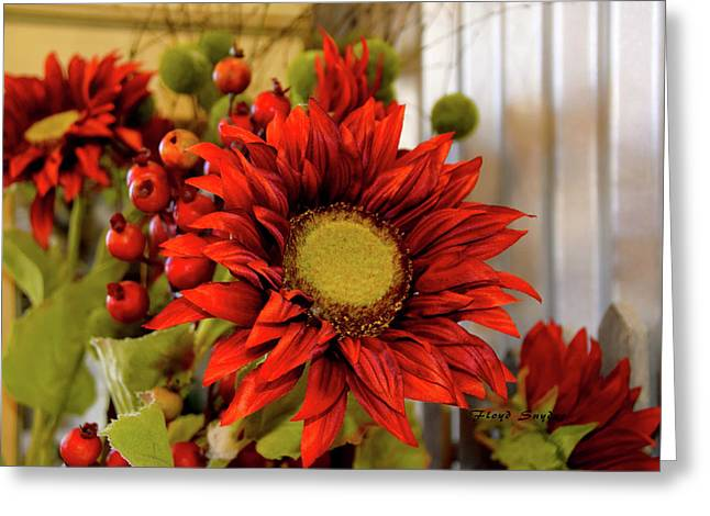 Red Sunflower Greeting Card by Floyd Snyder