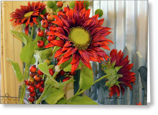 Red Sunflower Large Greeting Card by Floyd Snyder