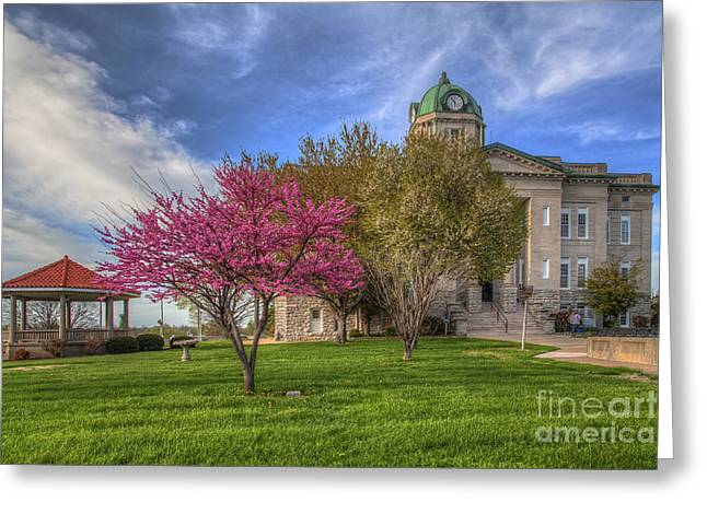 Redbud At The Courthouse  Greeting Card by Larry Braun