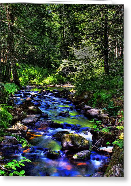 David Patterson Greeting Cards - Reeder Creek II Greeting Card by David Patterson