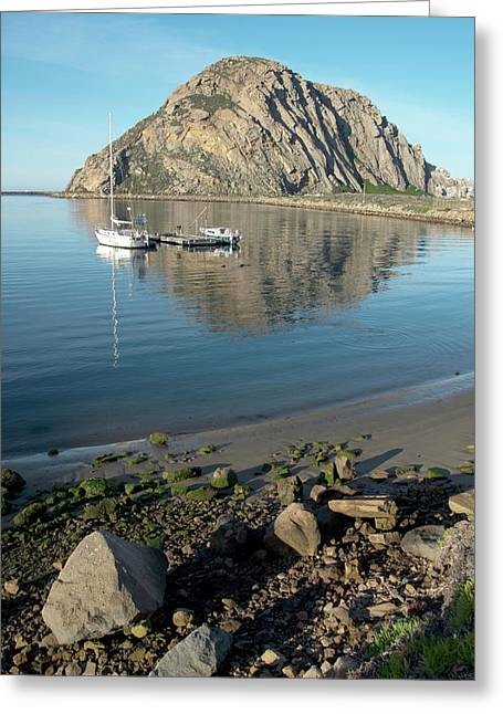 Reflection Anchorage  Greeting Card by Barbara Snyder
