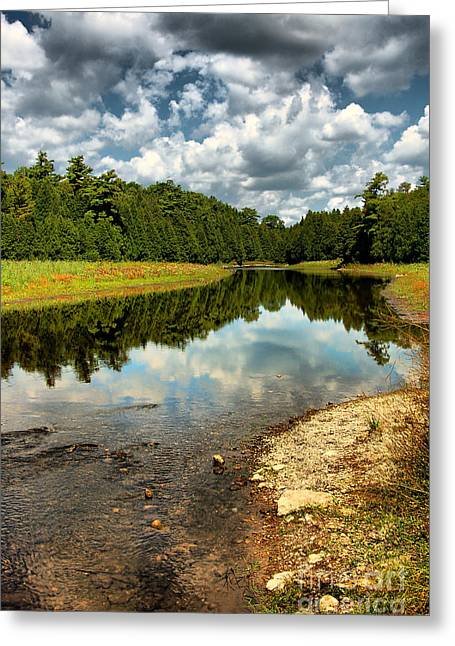 Reflection Of Nature Greeting Card by Joe  Ng