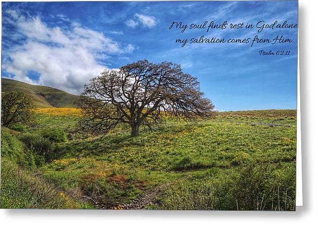 Rest Greeting Card by Lynn Hopwood
