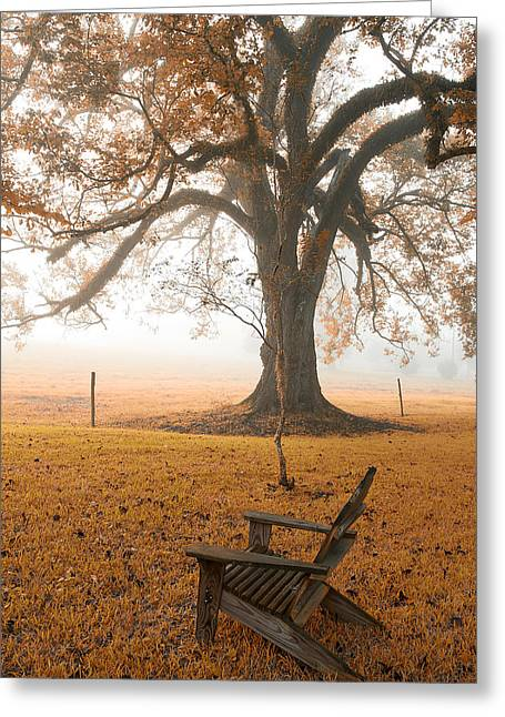 Reverie Greeting Card by Bonnie Barry