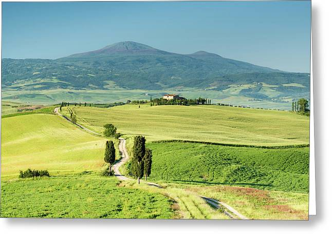Road To Terrapille Greeting Card by Michael Blanchette