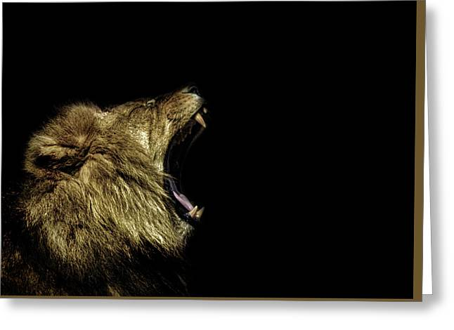 Roar Greeting Card by Martin Newman