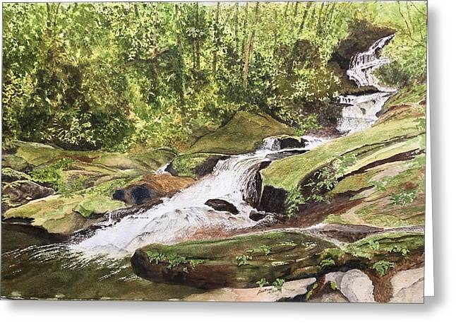 Greeting Card featuring the painting Roaring Fork Falls -- June 2017 by Joel Deutsch