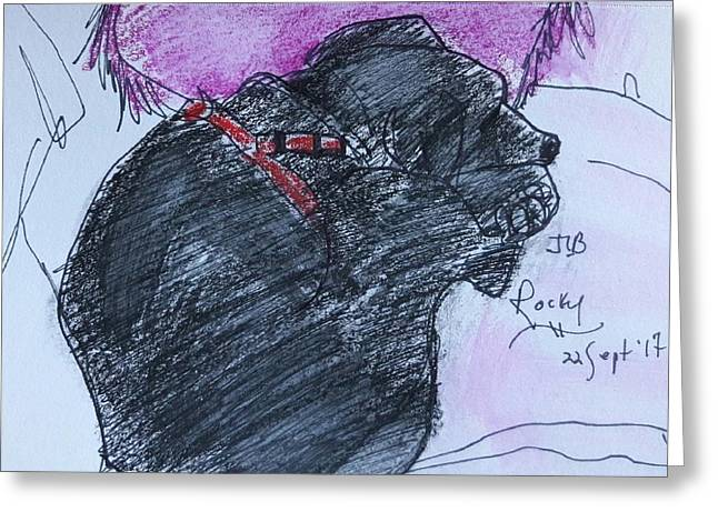 Rocky Greeting Card by Janet Butler