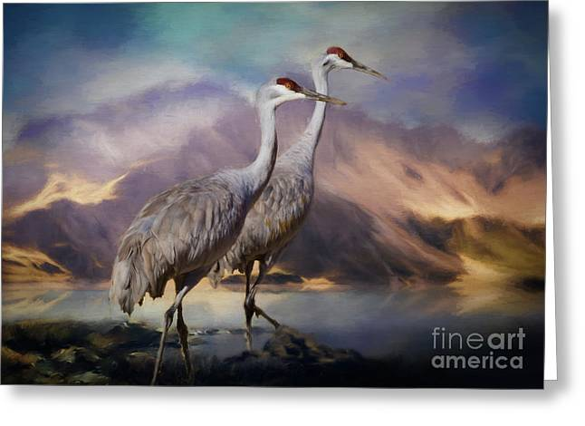 Rocky Mountain Sandhill Cranes Greeting Card