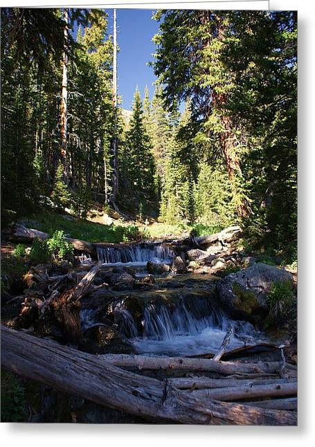 Rocky Mountain Summer Greeting Card