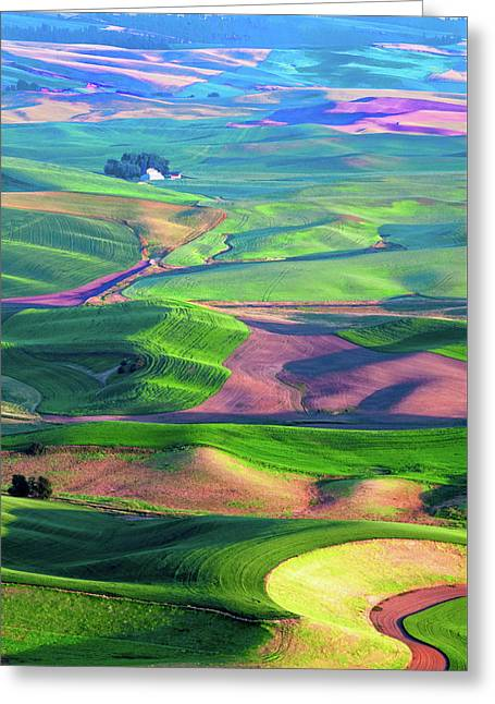 Green Hills Of The Palouse Greeting Card by James Hammond