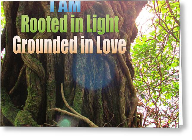 Rooted In Light Greeting Card by Dawn Richerson