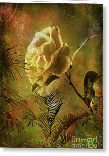 Rose Greeting Card by Andrzej Szczerski