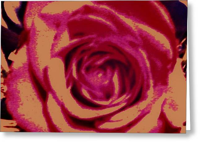 Rose Greeting Card by Jamey Balester