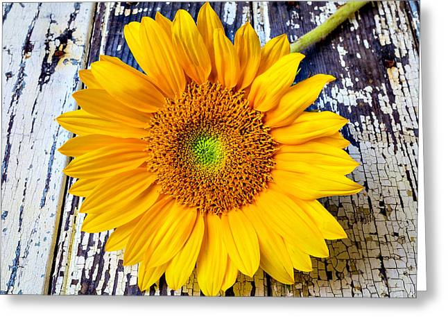 Rustic Sunflower Greeting Card