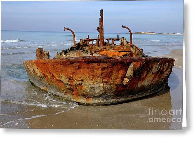 Rusty Abandoned Beached Ship  Greeting Card by Ofer Zilberstein
